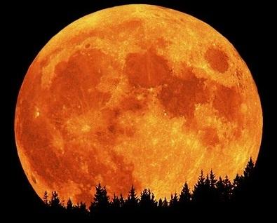 super-moon1.jpg